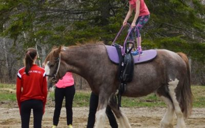 Aurora Vaulters: Offering Unique Equestrian Camp Programs in Lamoine